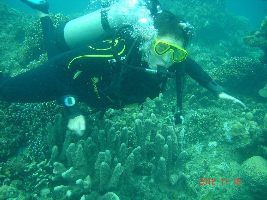 Handiplongeuse à Bali dans carnets de voyage dsc01467