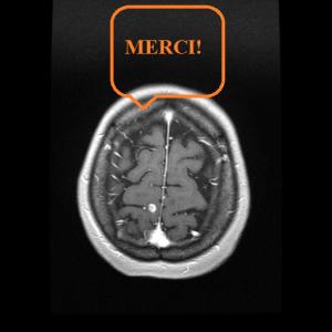 La myeline a besoin d'un coup de main!!!;  dans Actualite handicap gado-45-300x300
